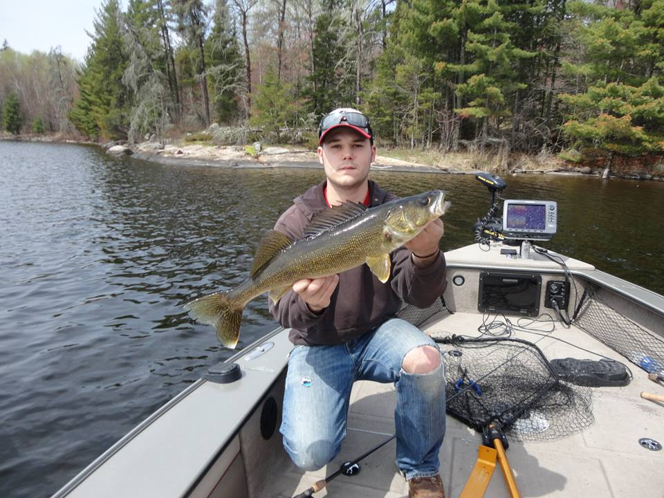 Camp narrows lodge ontario fishing walleye for Ontario fishing lodges