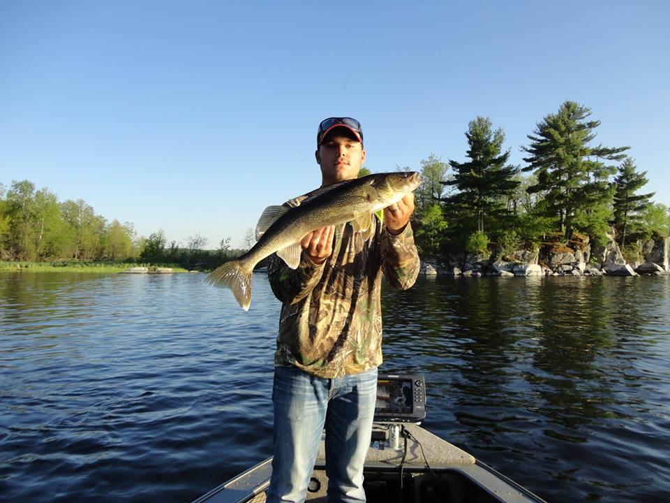 Camp narrows lodge ontario fishing walleye for Minnesota fishing regulations