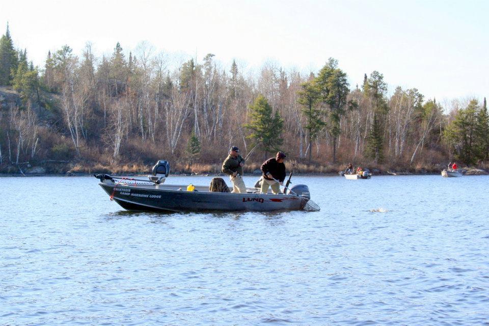 Ontario hunting at camp narrows lodge rainy lake ontario for Ontario fishing lodges